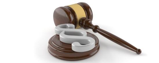 Stellungnahmen zu Gerichtsentscheidungen: BVerfG E